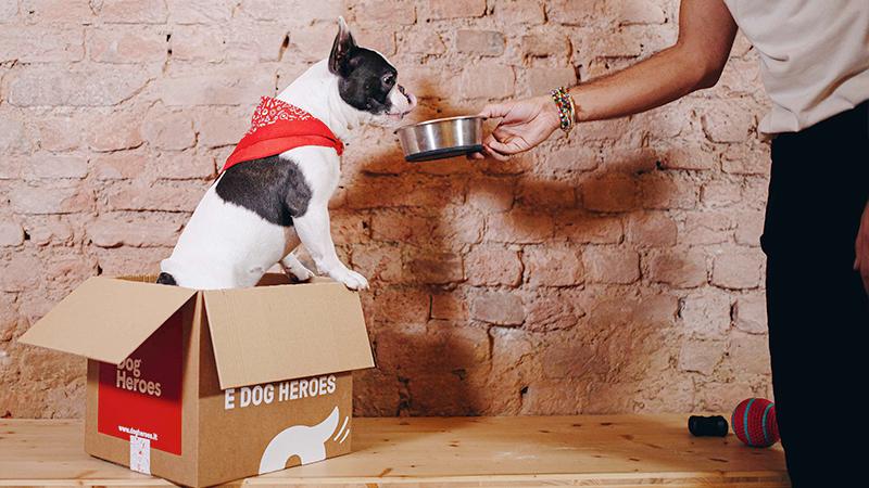 Il cibo per cani? Arriva a domicilio