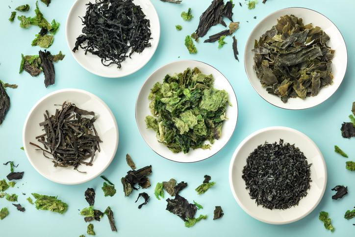 Alla scoperta delle alghe: come consumarle e perché