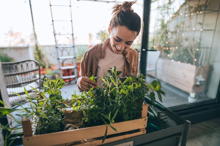 Sboccia la primavera: influencer da seguire per un pollice verde