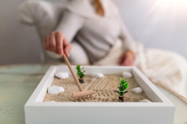 Giardino Zen In Miniatura In Casa Come Farlo Www Stile It