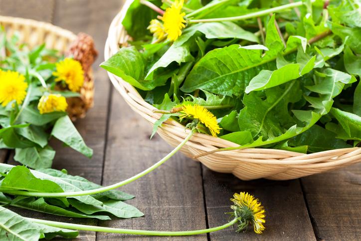 insalata di erbe selvatiche