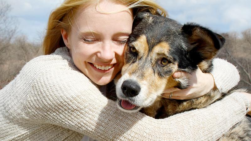 Animali domestici, quanto costa accogliere in casa Fido?