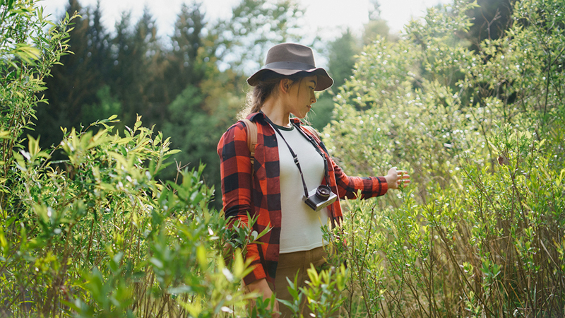 Forest bathing, la natura come cura anti-stress