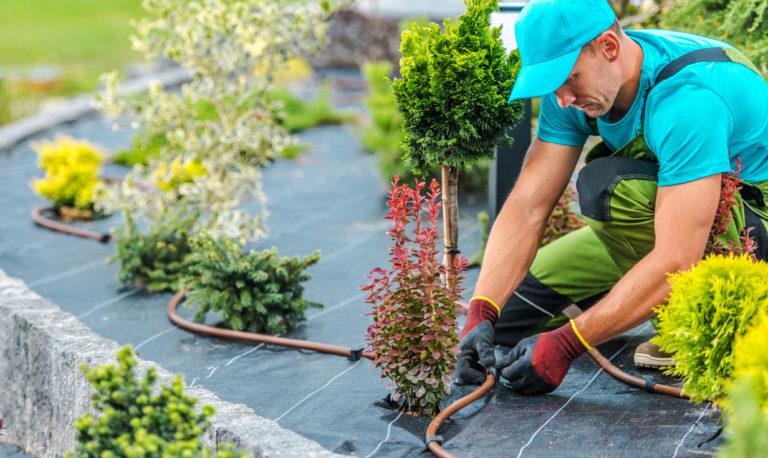 giardiniere che installa sistema di irrigazione