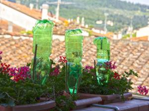 piante irrigate con bottiglie capovolte